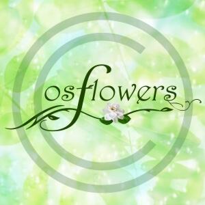 Собственное производство (цветы и растения)